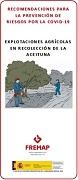 Recomendacións para a prevención de riscos pola COVID-19. Explotacións agrícolas en recolleita da oliva